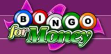 BingoForMoney USA Online Casino & Mobile Bingo Hall